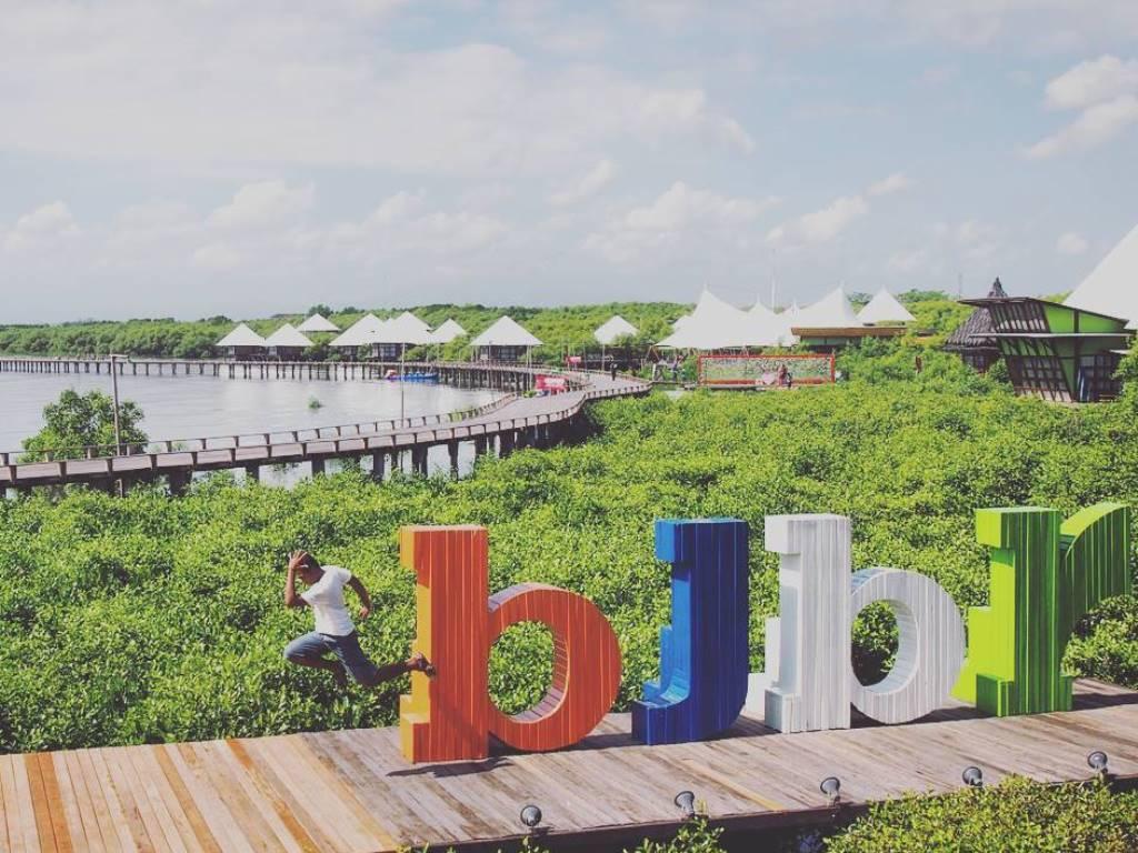 Lima Destinasi Wisata Mangrove Di Indonesia Mangrovemagz Com